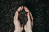 J. Hornig Spezial | Kaffee Ganze Bohne | 500g | Perfekt für Vollautomat und Filterkaffee - 4