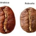 Arabica & Robusta Bohne
