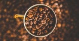 Lavazza Kaffee ganze Bohnen – Alle Sorten im Vergleich